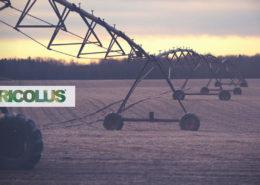 Modelli-di-simulazione-del-bilancio-idrico-come-supporto-all'irrigazione-Agricolus