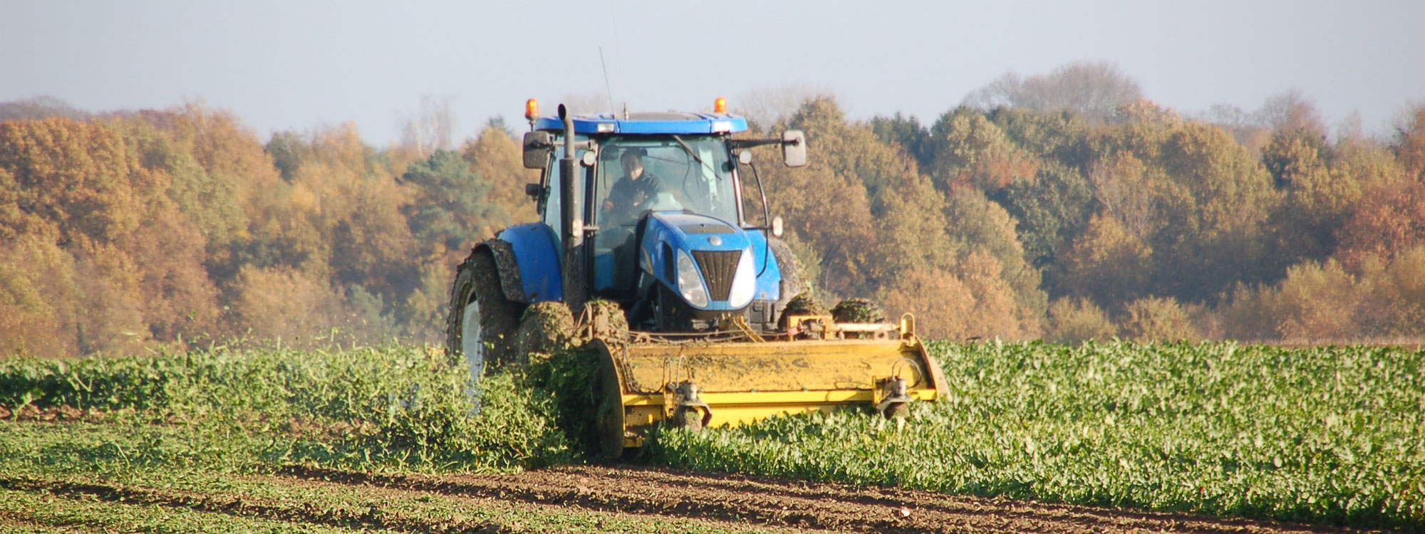 slider-plus-tractor-bg