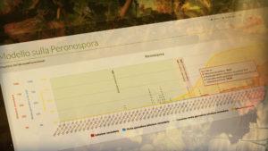 Modello previsionale Peronospora vite