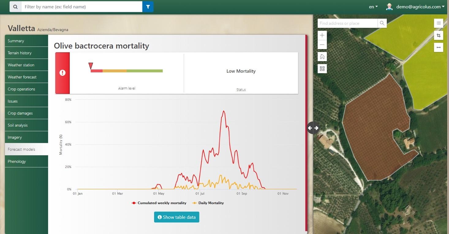Figura 3 Mortalità delle forme giovanili di mosca dell'olivo dovuta alle alte temperature estive