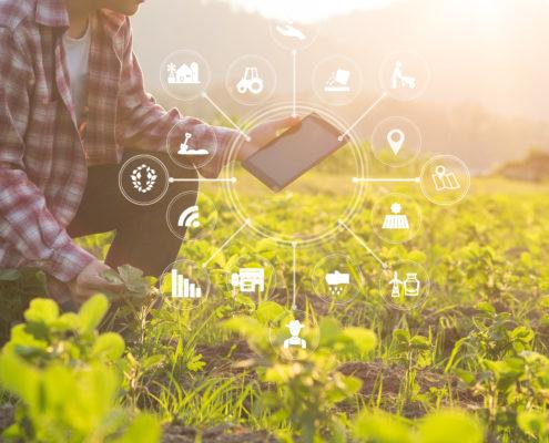 Smart farming on Demeter project