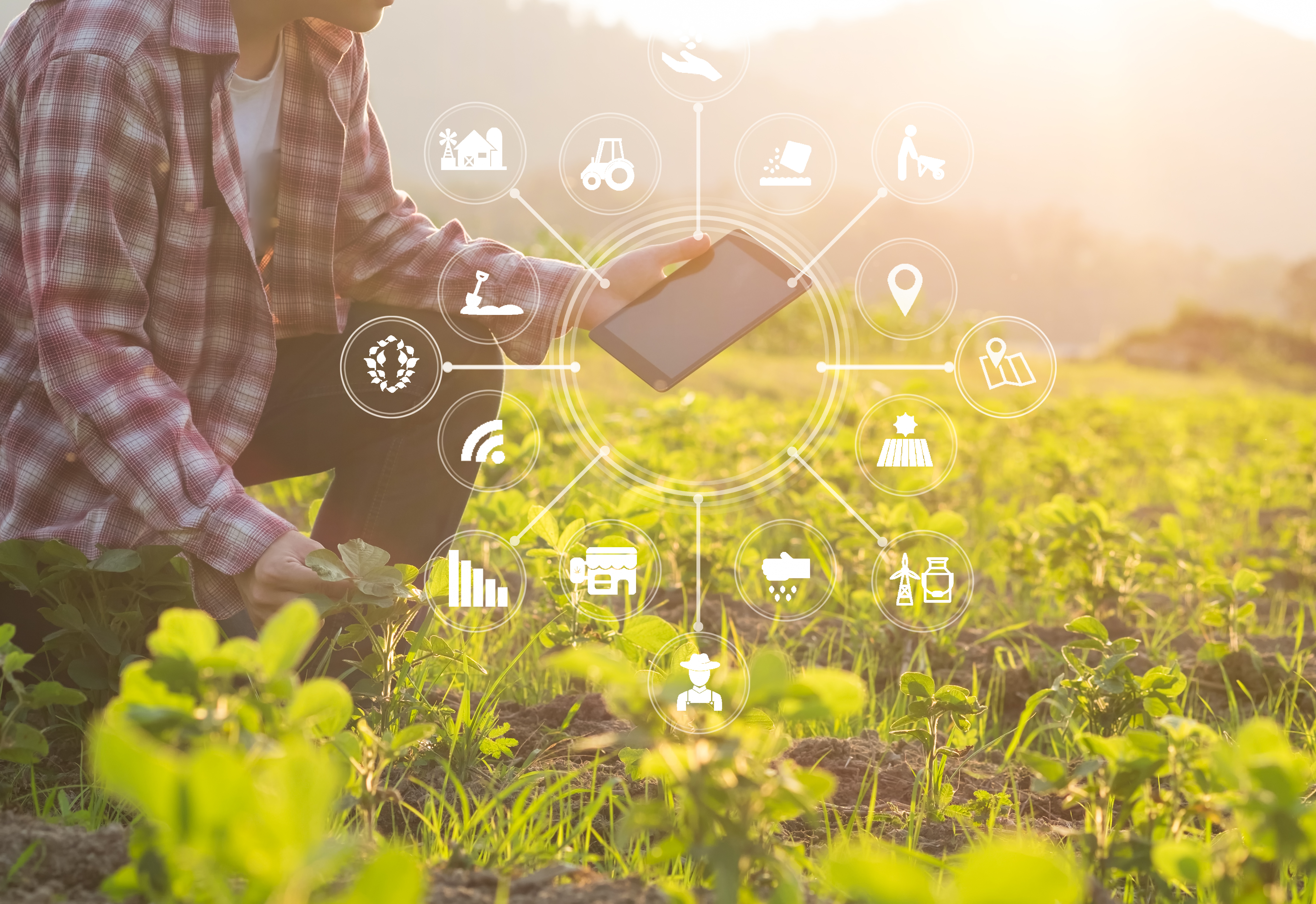 DEMETER: the European project for the Agri-Food sector