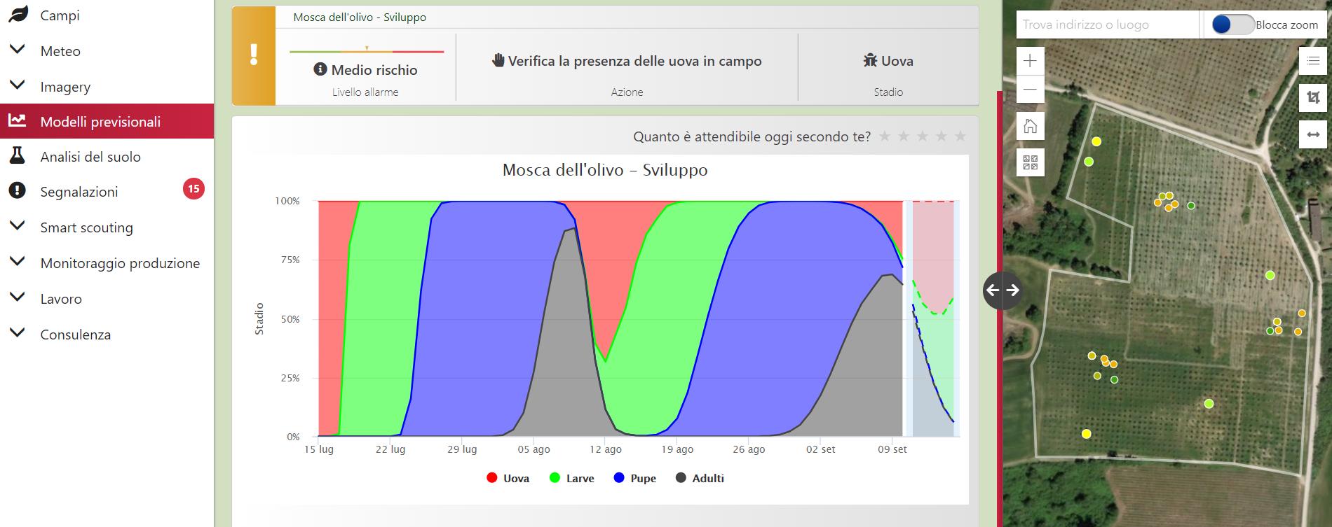 modello previsionale di sviluppo mosca dell'olivo