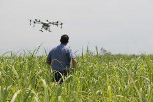Drone flight over a field