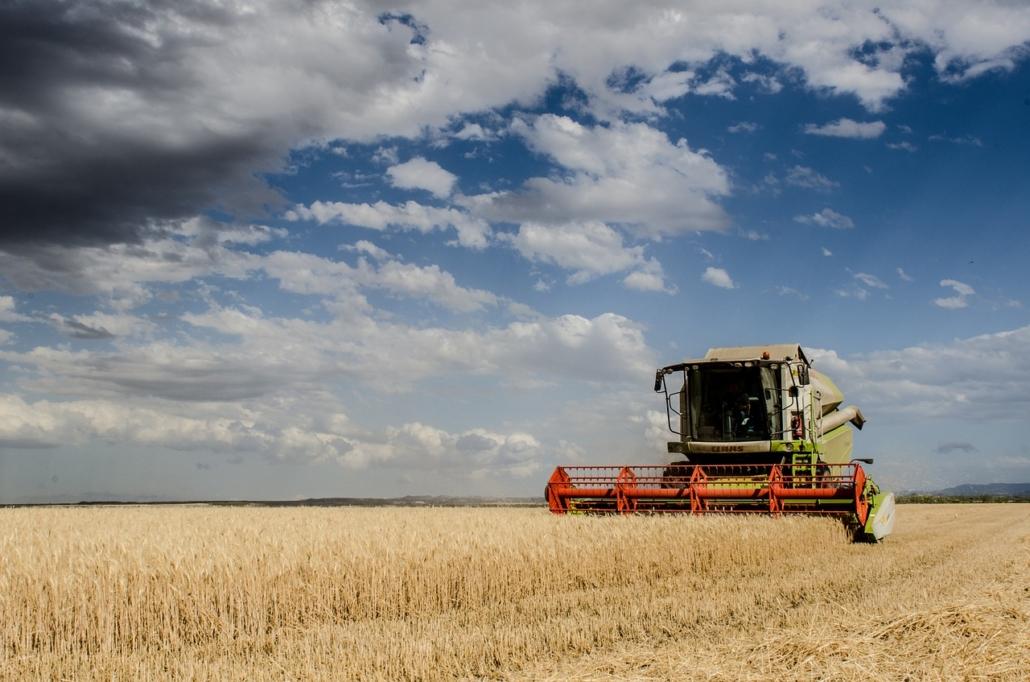 Le mappe di resa: l'importanza dei dati in agricoltura