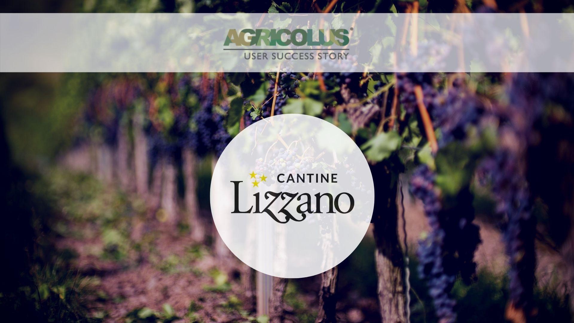 #Agricolus casi di successo: Cantine Lizzano e la gestione del vigneto
